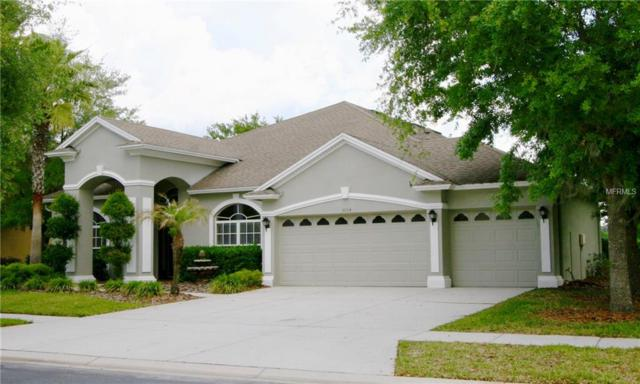 3004 Marble Crest Drive, Land O Lakes, FL 34638 (MLS #H2400071) :: Cartwright Realty