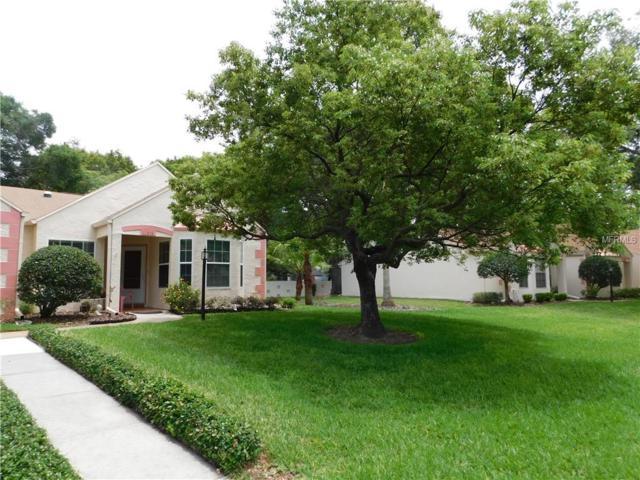 11316 Versailles Lane, Port Richey, FL 34668 (MLS #H2400167) :: The Duncan Duo Team