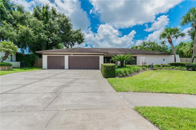 13910 Pepperrell Drive, Tampa, FL 33624 (MLS #H2400286) :: Team Bohannon Keller Williams, Tampa Properties