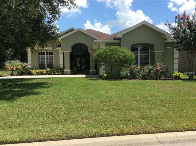12418 Forest Highlands Drive, Dade City, FL 33525 (MLS #H2400309) :: Team Bohannon Keller Williams, Tampa Properties