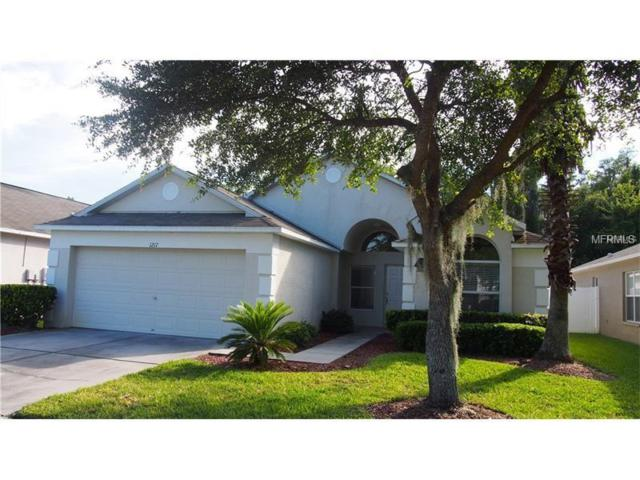 1217 Katahdin Court, Wesley Chapel, FL 33543 (MLS #H2400337) :: Team Bohannon Keller Williams, Tampa Properties