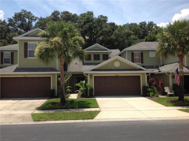 20120 Indian Rosewood Drive, Tampa, FL 33647 (MLS #H2400406) :: Team Bohannon Keller Williams, Tampa Properties