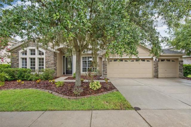6618 Thornton Palms Drive, Tampa, FL 33647 (MLS #H2400505) :: Cartwright Realty