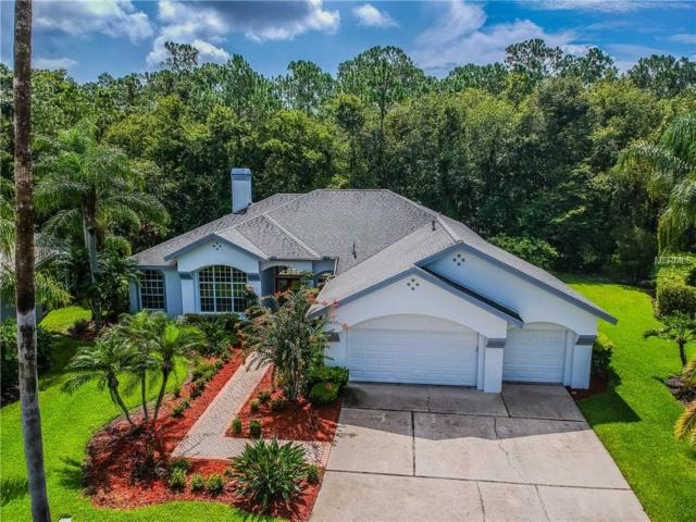 11809 Middlebury Drive, Tampa, FL 33626 (MLS #H2400544) :: The Duncan Duo Team