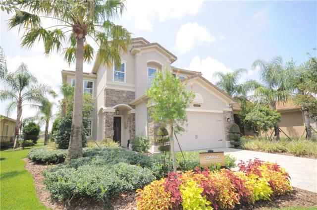 Address Not Published, Wesley Chapel, FL 33543 (MLS #H2400699) :: The Duncan Duo Team