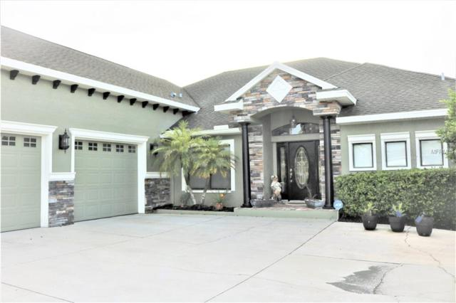 3053 Flat Rock Place, Land O Lakes, FL 34639 (MLS #H2400753) :: The Duncan Duo Team