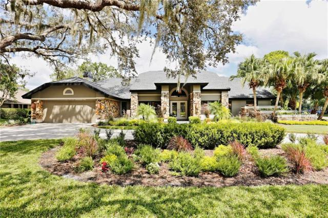 651 Royal Dornoch Court, Tarpon Springs, FL 34688 (MLS #H2400789) :: The Lockhart Team