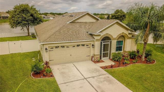7205 Maysville Court, Wesley Chapel, FL 33545 (MLS #H2400844) :: Delgado Home Team at Keller Williams