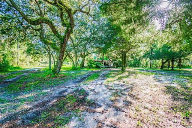 13604 Oakwood Drive, Hudson, FL 34669 (MLS #H2400889) :: The Duncan Duo Team