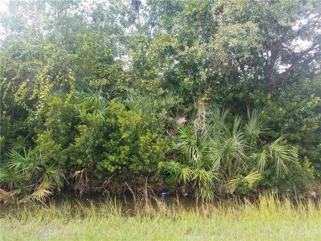 11627 Messler Road, Gibsonton, FL 33534 (MLS #H2400892) :: The Duncan Duo Team