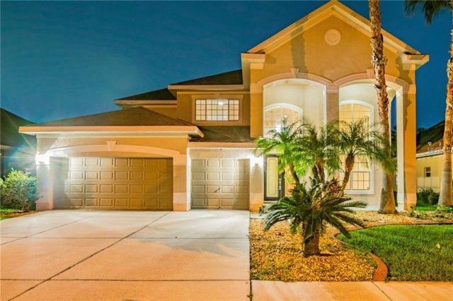 3647 Valencia Cove Court, Land O Lakes, FL 34639 (MLS #H2400911) :: RE/MAX CHAMPIONS
