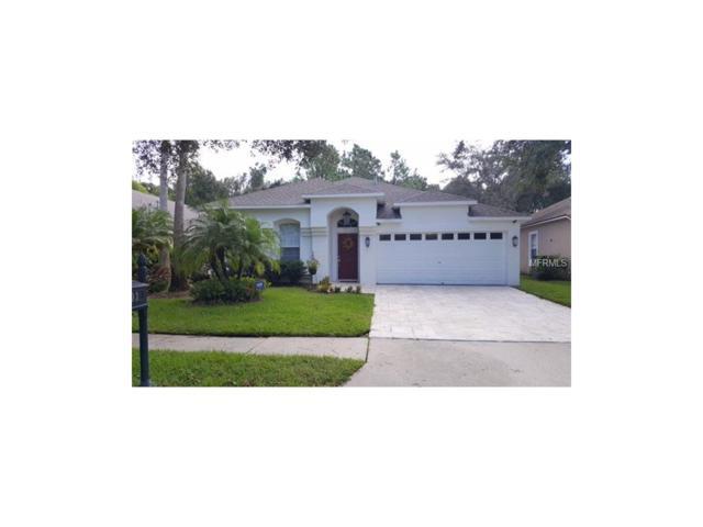 11803 Derbyshire Drive, Tampa, FL 33626 (MLS #J801219) :: The Duncan Duo & Associates