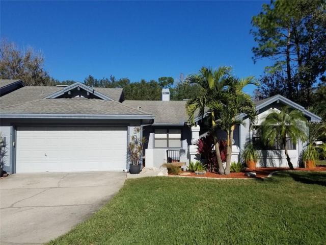 230 Pinewinds Boulevard, Oldsmar, FL 34677 (MLS #J801404) :: The Duncan Duo Team