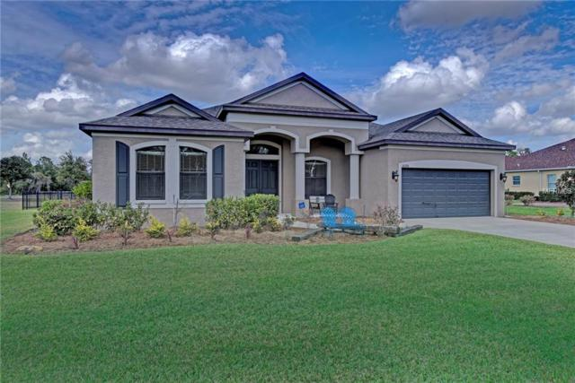 16206 29TH Court E, Parrish, FL 34219 (MLS #J801493) :: Medway Realty