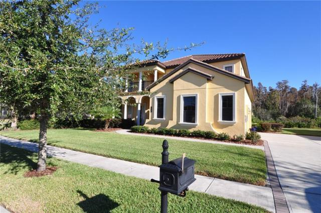 8322 Windsor Bluff Drive, Tampa, FL 33647 (MLS #J900169) :: Medway Realty
