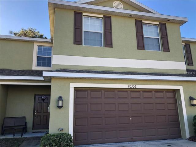 20306 Starfinder Way, Tampa, FL 33647 (MLS #J902085) :: Cartwright Realty