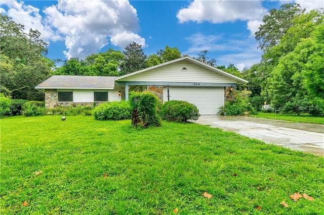 12212 Deep Creek Drive, Spring Hill, FL 34609 (MLS #J907853) :: Team Pepka