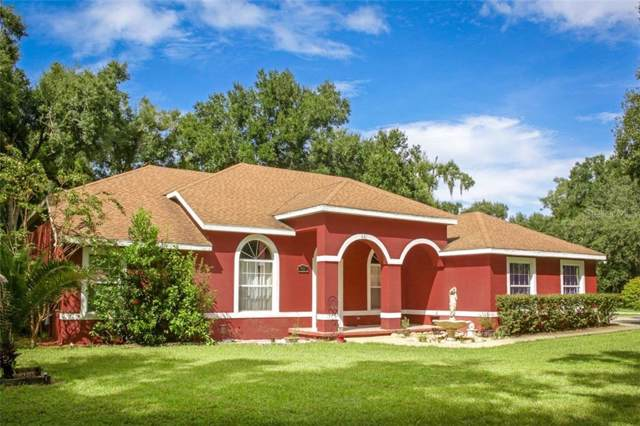 401 Cassady Street, Umatilla, FL 32784 (MLS #J908462) :: The Brenda Wade Team