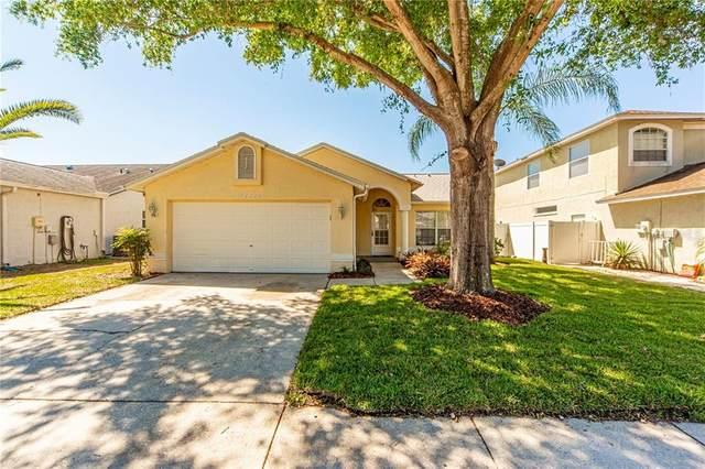 11222 Clayridge Drive, Tampa, FL 33635 (MLS #J913042) :: Griffin Group