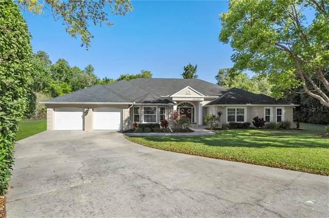 Address Not Published, Spring Hill, FL 34607 (MLS #J913647) :: EXIT King Realty