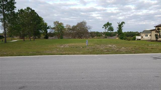 30100 Bretton Loop, Mount Dora, FL 32757 (MLS #J917125) :: Griffin Group