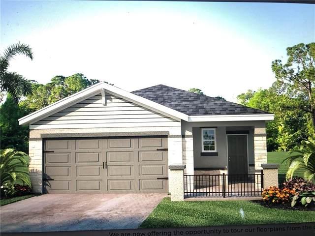 3115 Borassus Drive, New Smyrna Beach, FL 32168 (MLS #J918096) :: BuySellLiveFlorida.com