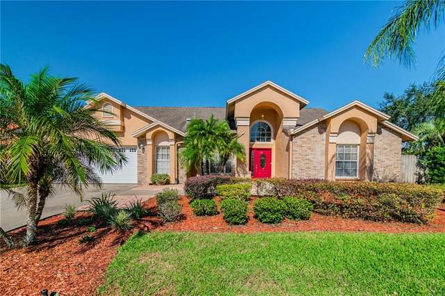 15001 Laurel Cove Circle, Odessa, FL 33556 (MLS #J920025) :: Griffin Group