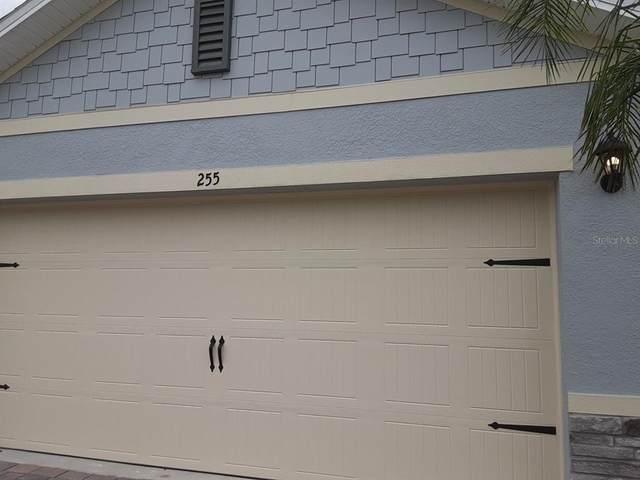 255 Caryota Court, New Smyrna Beach, FL 32168 (MLS #J927290) :: BuySellLiveFlorida.com