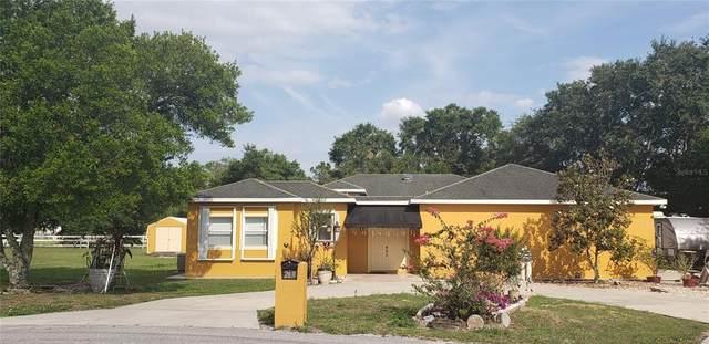 Haines City, FL 33844 :: Zarghami Group