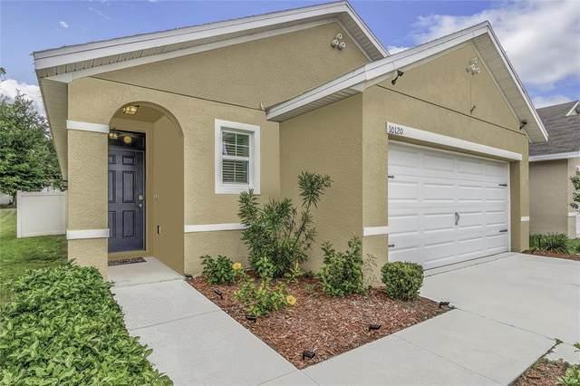 Tampa, FL 33610 :: Everlane Realty