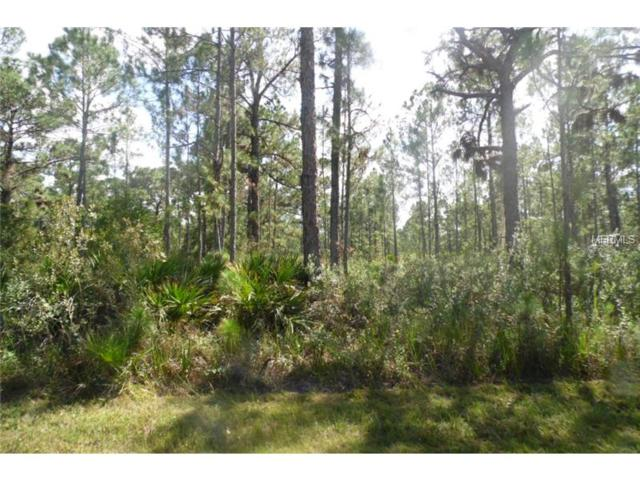 1009 Calliandra Drive, Indian Lake Estates, FL 33855 (MLS #K4700143) :: Team Pepka