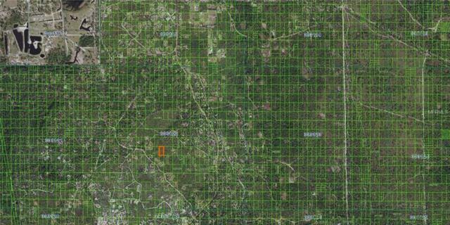 Inaccessible River Ranch Lot, Frostproof, FL 33843 (MLS #K4900061) :: Cartwright Realty