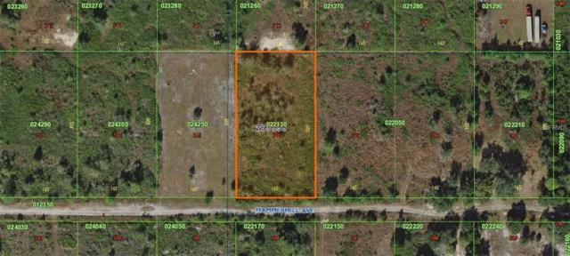 Hammermill Avenue, Lake Wales, FL 33859 (MLS #K4900326) :: Zarghami Group