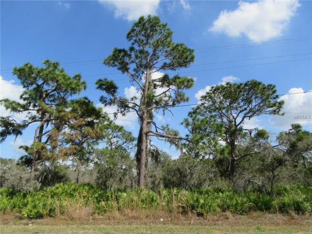 Tiger Lake Road, Lake Wales, FL 33898 (MLS #K4900375) :: The Duncan Duo Team