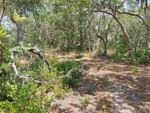 Deer Road, Frostproof, FL 33843 (MLS #K4900469) :: The Duncan Duo Team