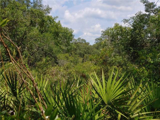 2873 Sand Pine Trail, Frostproof, FL 33843 (MLS #K4900523) :: Team Bohannon Keller Williams, Tampa Properties