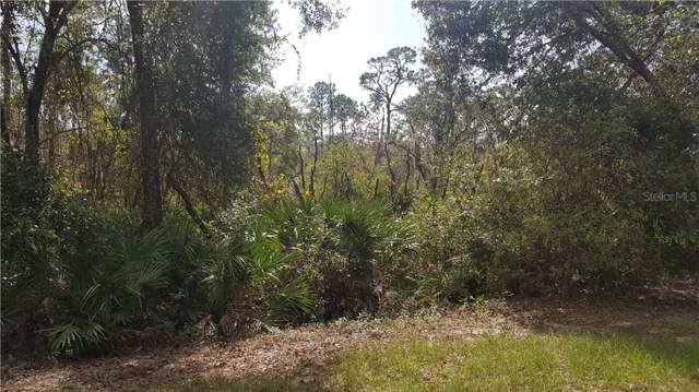 Armadillo Road, Frostproof, FL 33843 (MLS #K4900646) :: Homepride Realty Services