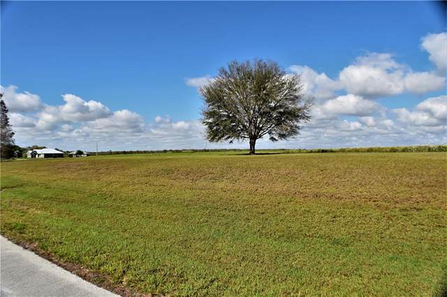 0 North Lake Buffum Shore Road, Fort Meade, FL 33841 (MLS #K4900764) :: The Duncan Duo Team