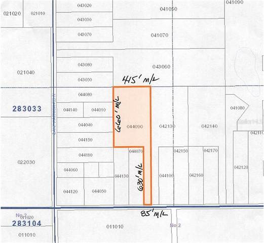 Alico Libby Road, Babson Park, FL 33827 (MLS #K4900827) :: McConnell and Associates