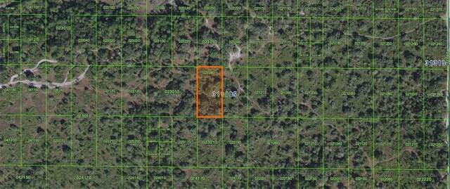 Inaccessible River Ranch Tract, Frostproof, FL 33843 (MLS #K4900888) :: Griffin Group