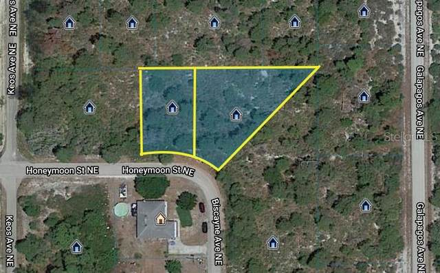 642 & 644 Honeymoon Street NE, Lake Placid, FL 33852 (MLS #K4900917) :: Bustamante Real Estate