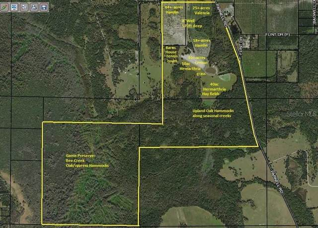 1702 Parnell Road, Zolfo Springs, FL 33890 (MLS #K4900967) :: The Robertson Real Estate Group