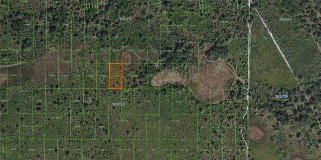 Inaccessible River Ranch Poa Lot, Frostproof, FL 33843 (MLS #K4900975) :: Griffin Group