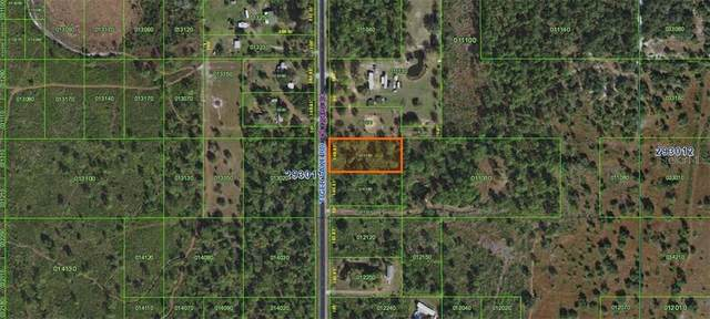 Tiger Lake Road, Lake Wales, FL 33898 (MLS #K4901047) :: Rabell Realty Group