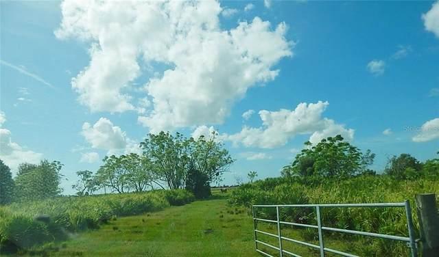 Avon Park Cutoff Road, Fort Meade, FL 33841 (MLS #K4901057) :: Delta Realty, Int'l.