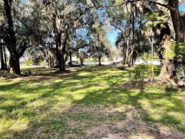 Palmetto Avenue S, Fort Meade, FL 33841 (MLS #K4901188) :: Dalton Wade Real Estate Group