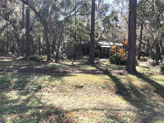 2907 Mar Lisa Cove Road, Lake Wales, FL 33898 (MLS #K4901189) :: Young Real Estate