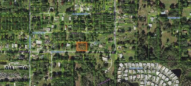 Taylor Road, Auburndale, FL 33823 (MLS #K4901338) :: Your Florida House Team