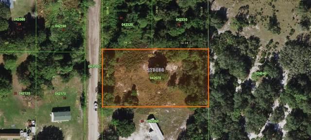 Cottage Hill Street, Lake Wales, FL 33859 (MLS #K4901379) :: Frankenstein Home Team