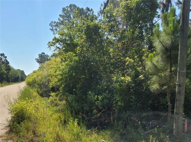 Fazzini Drive, Frostproof, FL 33843 (MLS #K4901397) :: Everlane Realty